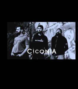 Ciconia_promo