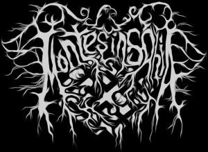 Montes Insania_logo