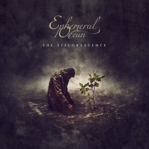 The-Efflorescence