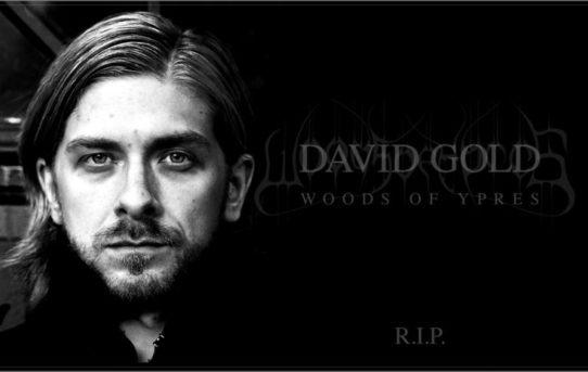 WOODS OF YPRES - Trpký osud Davida Golda