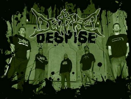 despise2