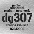 dg307
