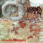 moozazoom